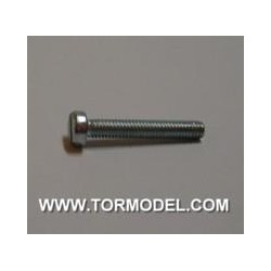 Tornillo zinc M2 X 20mm. - 5 unidades