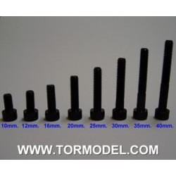 Tornillo allen negro M5 X 10mm. - 5 unidades