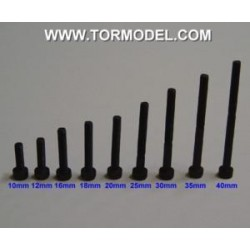 Tornillo allen negro M4 X 10mm. - 5 unidades